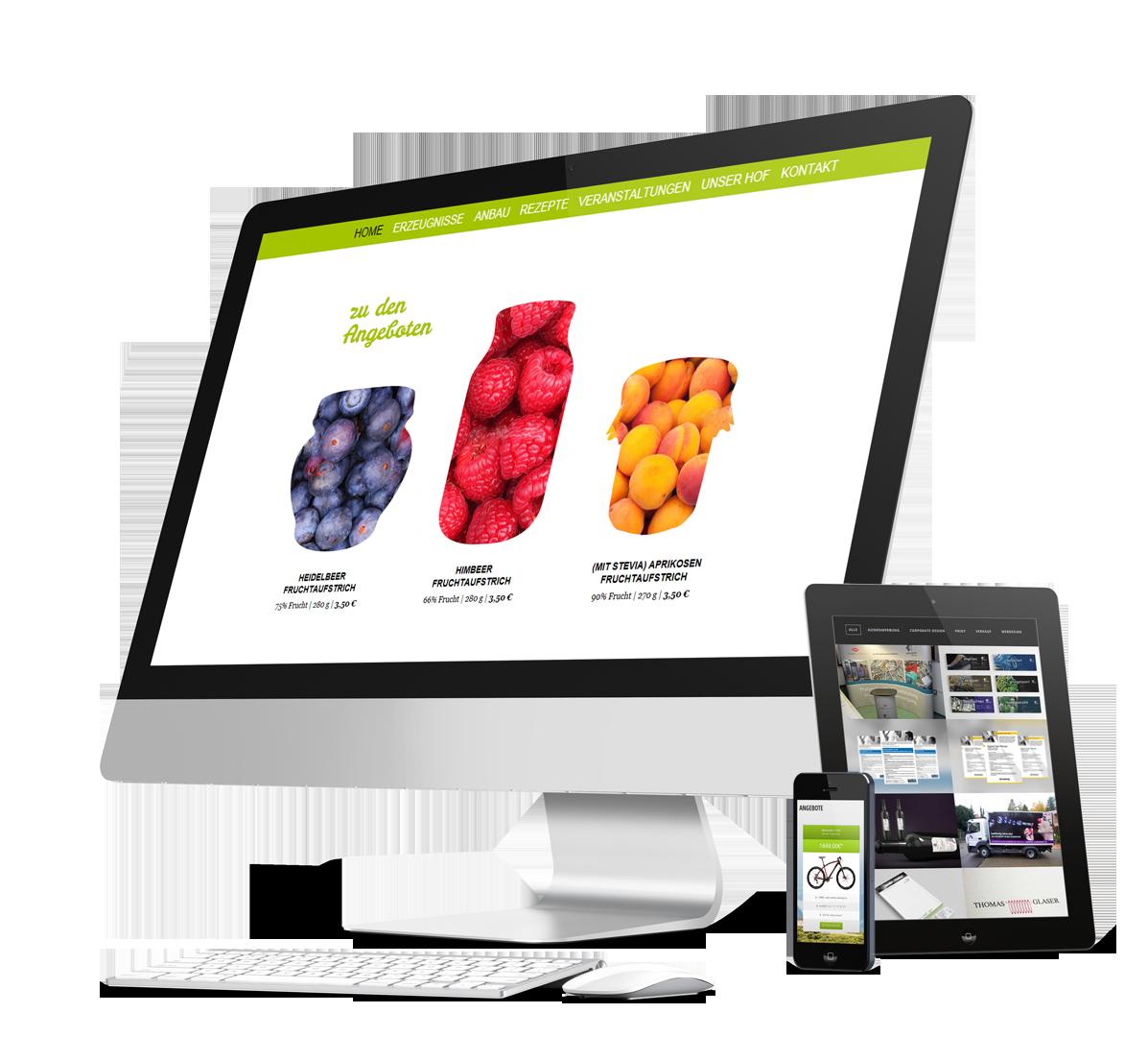 Werbeagentur Fritz in Kornwestheim | Homepage mit dem CMS Wordpress